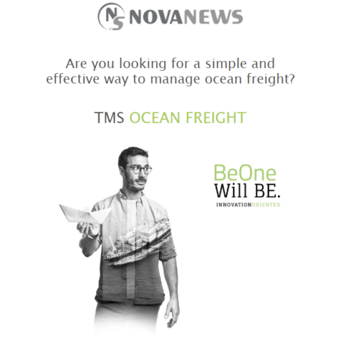 The Ocean Freight